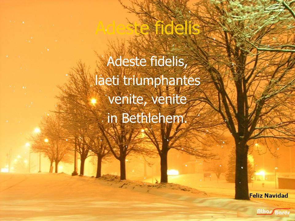 Adeste fidelis Dominum ! Vrolijk kerstfeest