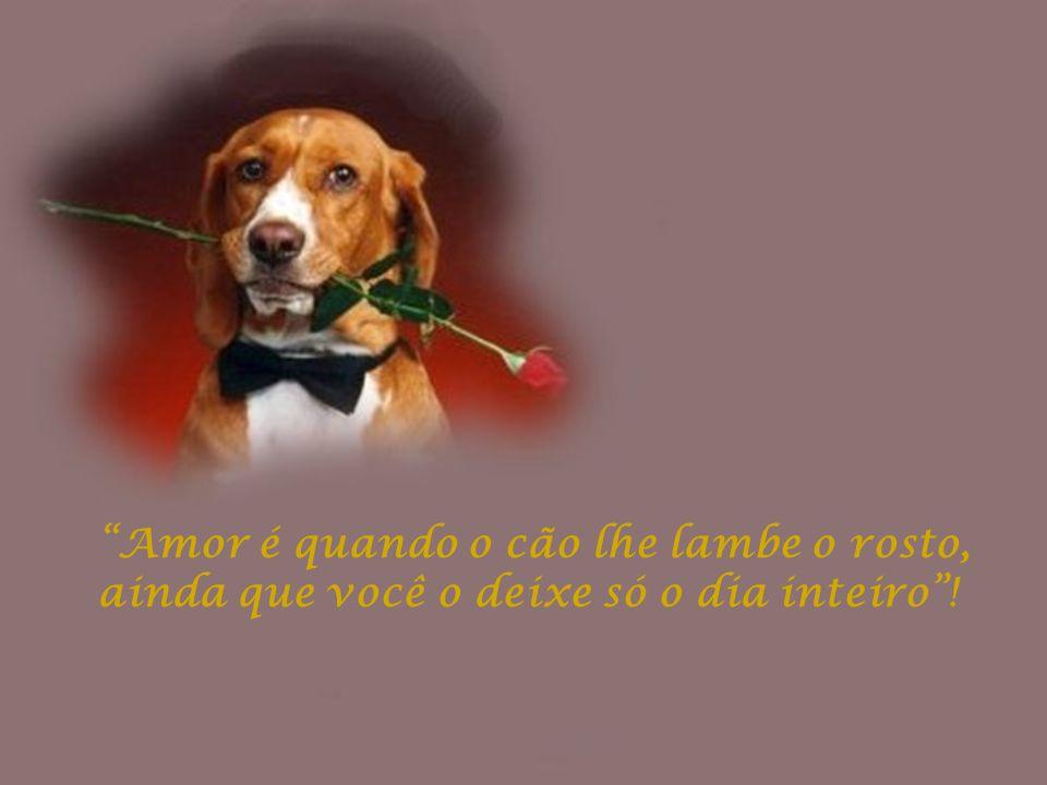 Amor é quando o cão lhe lambe o rosto, ainda que você o deixe só o dia inteiro!
