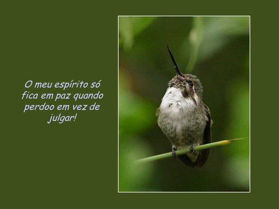 O meu espírito só fica em paz quando perdoo em vez de julgar!