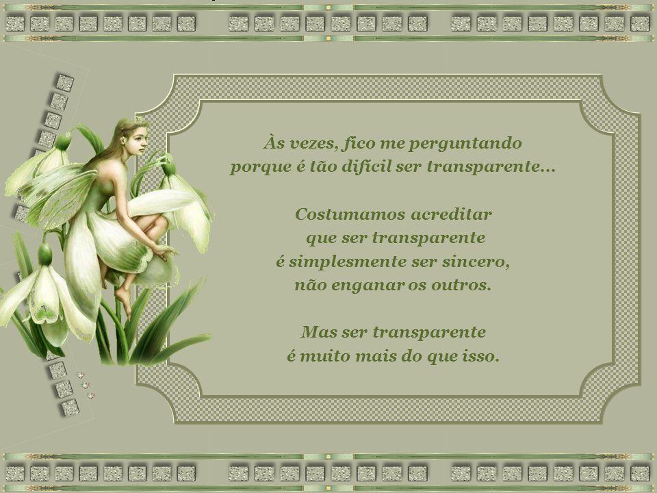 SER TRANSPARENTE Rosana Braga