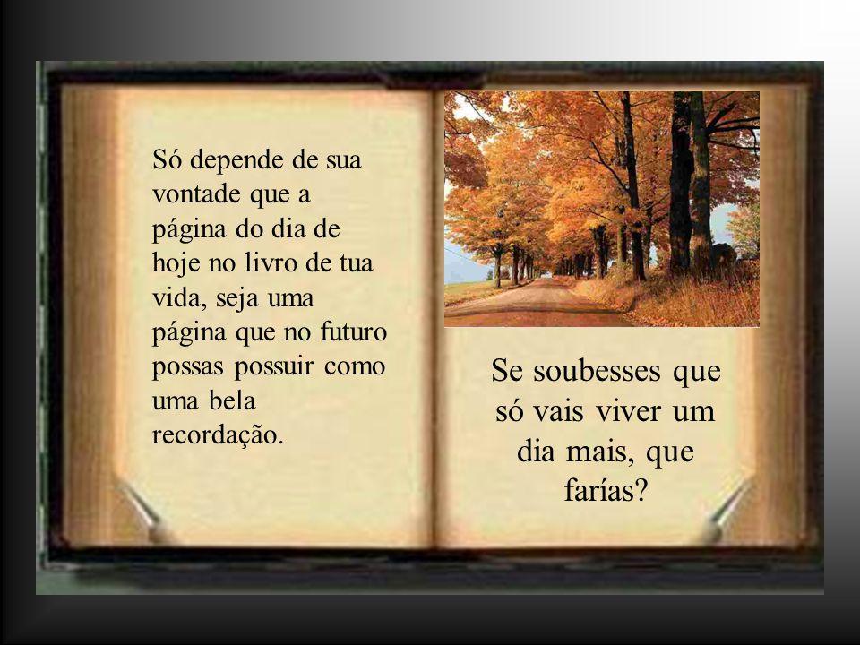 Só depende de sua vontade que a página do dia de hoje no livro de tua vida, seja uma página que no futuro possas possuir como uma bela recordação.