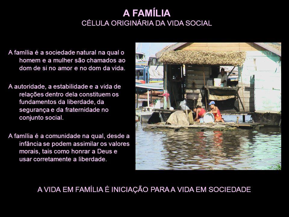 A FAMÍLIA CÉLULA ORIGINÁRIA DA VIDA SOCIAL A família é a sociedade natural na qual o homem e a mulher são chamados ao dom de si no amor e no dom da vida.