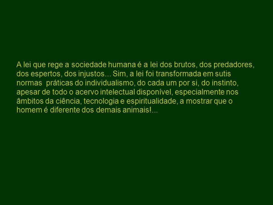 A lei que rege a sociedade humana é a lei dos brutos, dos predadores, dos espertos, dos injustos...