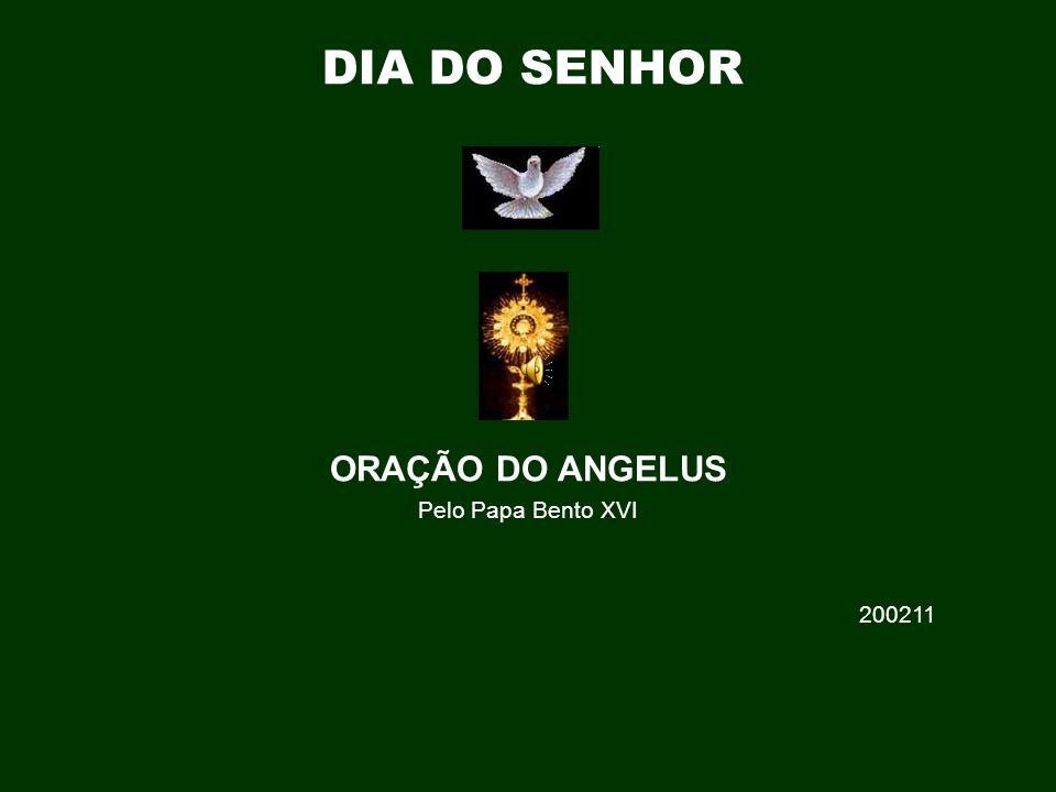 ORAÇÃO DO ANGELUS Pelo Papa Bento XVI 200211 DIA DO SENHOR