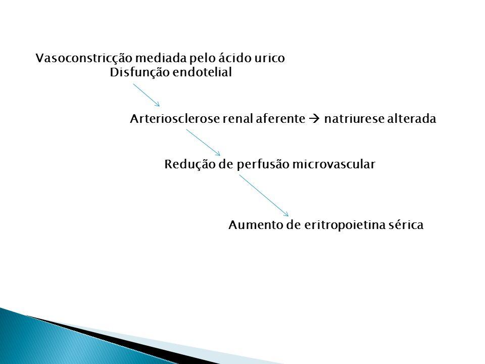 Vasoconstricção mediada pelo ácido urico Disfunção endotelial Arteriosclerose renal aferente natriurese alterada Redução de perfusão microvascular Aumento de eritropoietina sérica