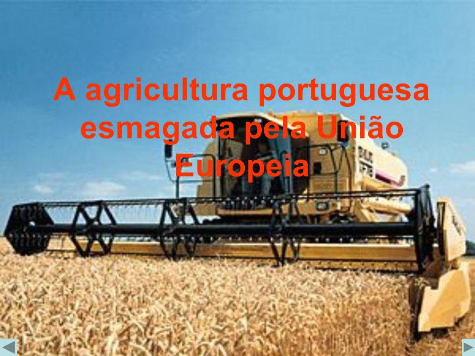 A agricultura portuguesa esmagada pela União Europeia