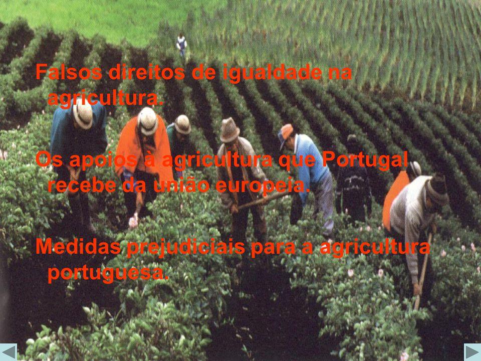 Falsos direitos de igualdade na agricultura. Os apoios à agricultura que Portugal recebe da união europeia. Medidas prejudiciais para a agricultura po