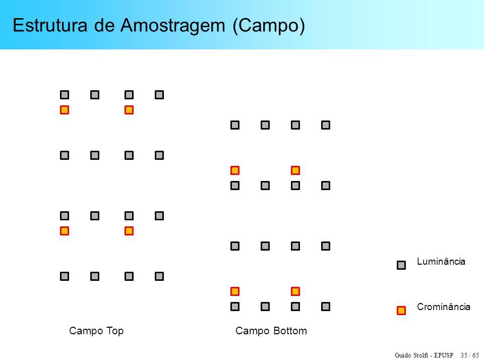 Guido Stolfi - EPUSP 35 / 65 Estrutura de Amostragem (Campo) Luminância Crominância Campo TopCampo Bottom
