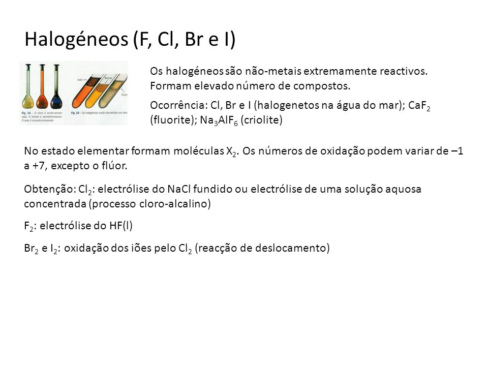 Os halogéneos são não-metais extremamente reactivos. Formam elevado número de compostos. No estado elementar formam moléculas X 2. Os números de oxida