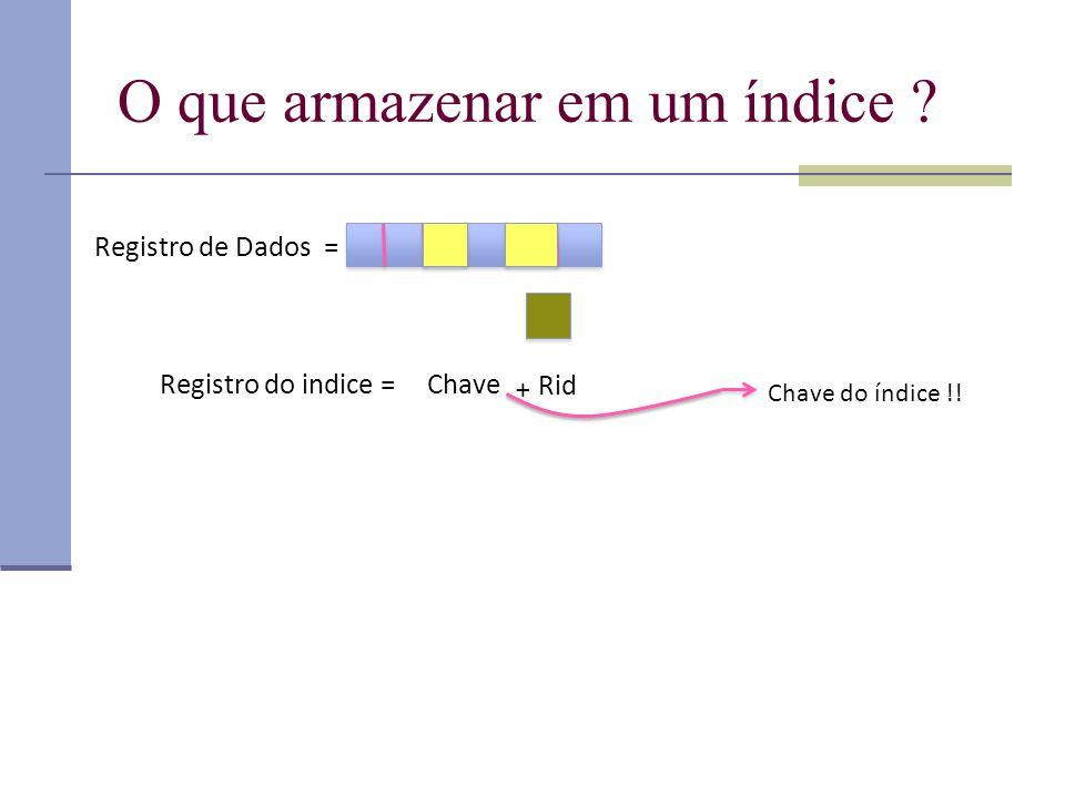 O que armazenar em um índice ? Registro de Dados = Chave Rid + Registro do indice = Chave do índice !!