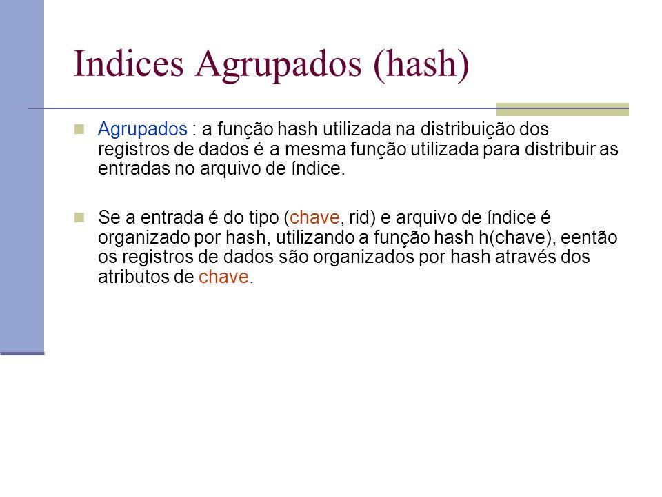 Indices Agrupados (hash) Agrupados : a função hash utilizada na distribuição dos registros de dados é a mesma função utilizada para distribuir as entr
