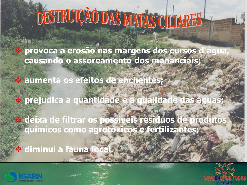 Não há como não produzir lixo, mas podemos diminuir essa produção