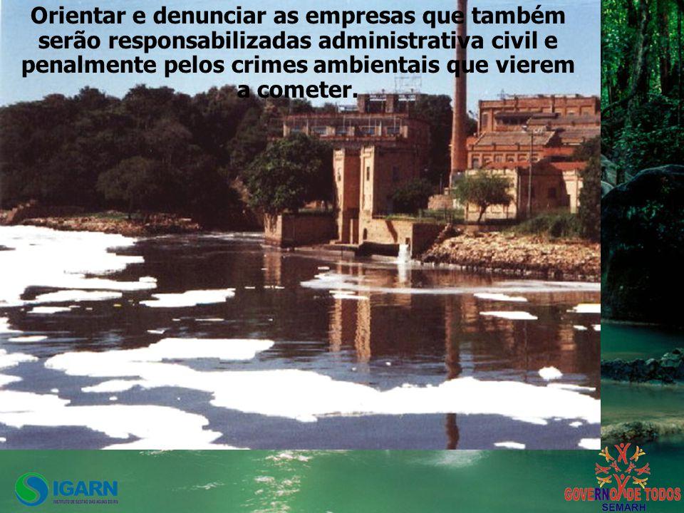 Orientar e denunciar as empresas que também serão responsabilizadas administrativa civil e penalmente pelos crimes ambientais que vierem a cometer.