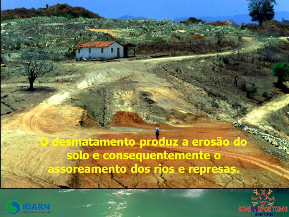 O desmatamento produz a erosão do solo e consequentemente o assoreamento dos rios e represas.
