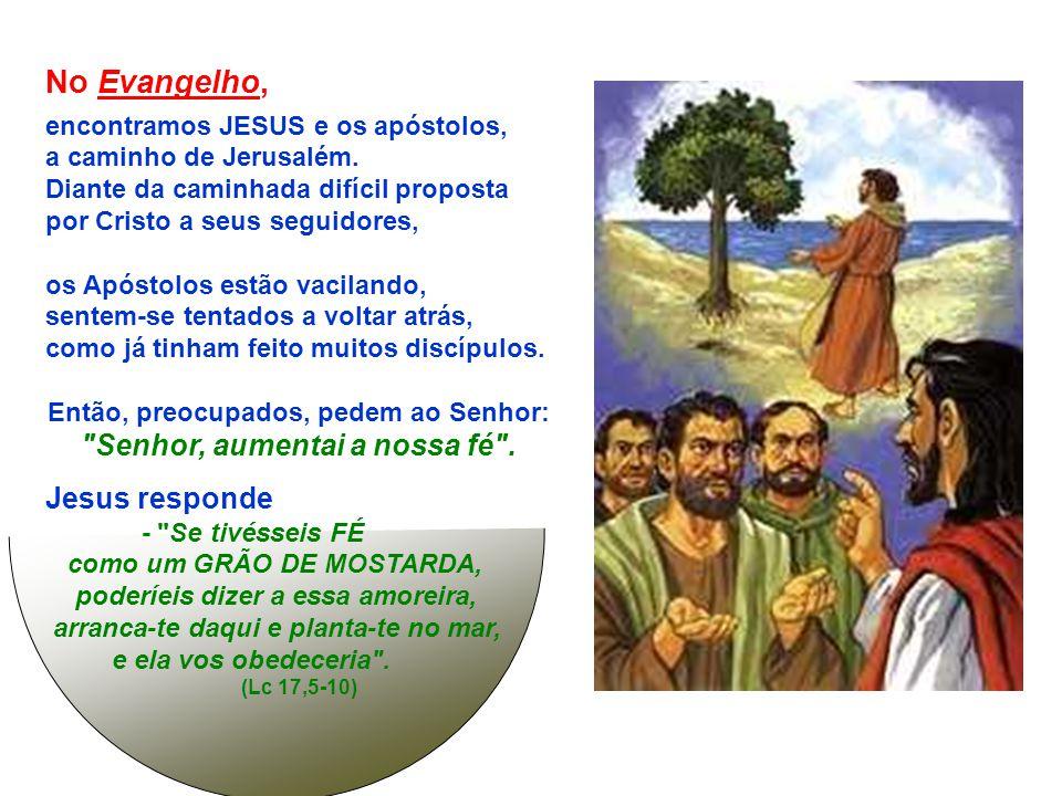 SÃO PAULO convida Timóteo, cansado e preocupado pelas adversidades (Paulo preso, Apóstolos morrendo) :