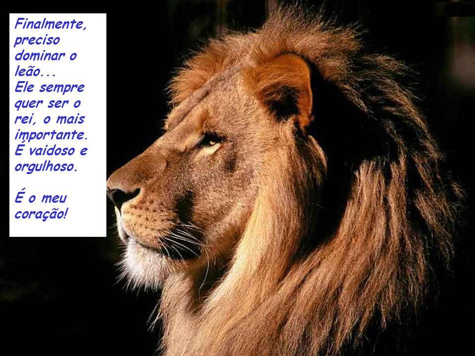 Finalmente, preciso dominar o leão...Ele sempre quer ser o rei, o mais importante.