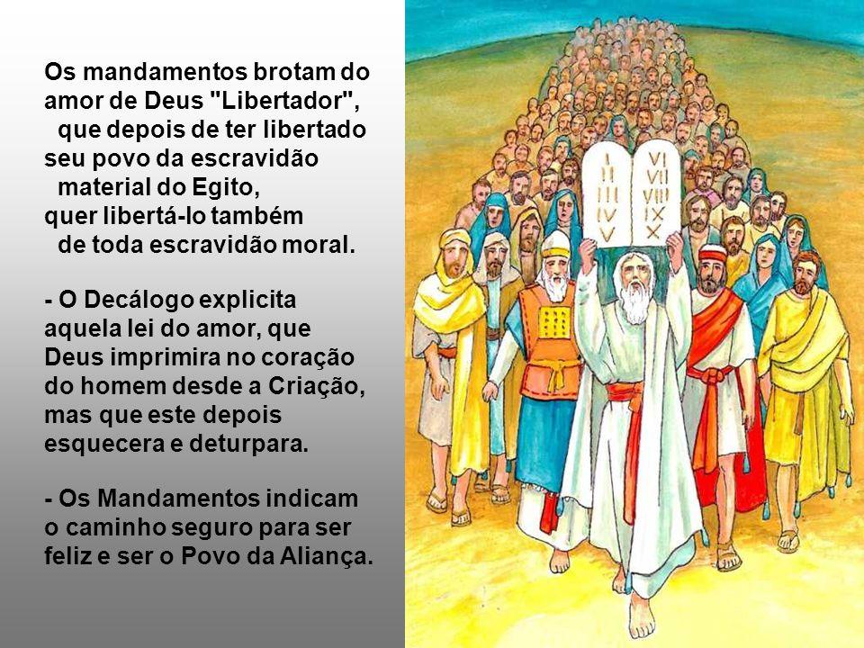As leituras tratam de pontos fundamentais da religião judaica: a LEI e o TEMPLO, que também estavam precisando de uma purificação...