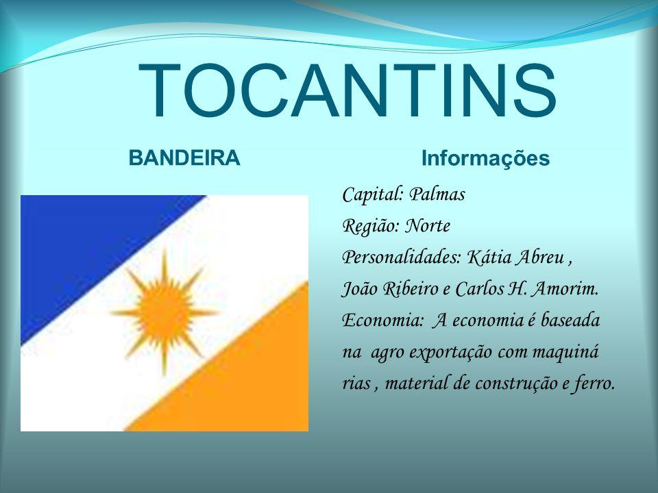 TOCANTINS BANDEIRA Informações Capital: Palmas Região: Norte Personalidades: Kátia Abreu, João Ribeiro e Carlos H. Amorim. Economia: A economia é base