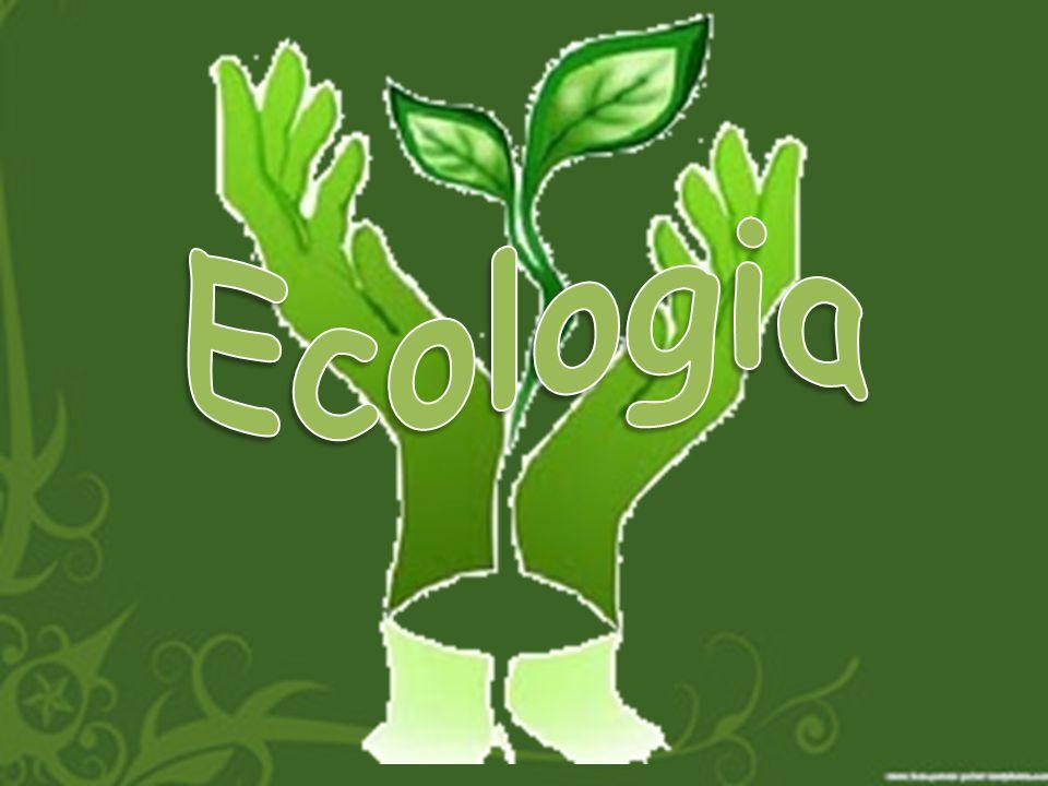 O que a ecologia estuda.A Ecologia é um campo de estudo muito amplo.