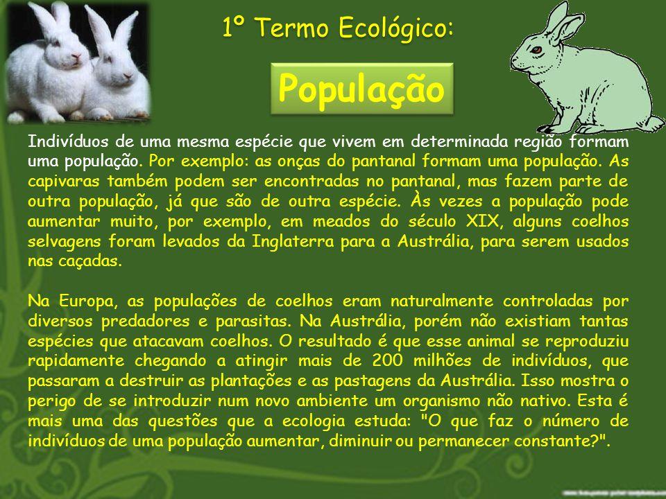 Indivíduos de uma mesma espécie que vivem em determinada região formam uma população. Por exemplo: as onças do pantanal formam uma população. As capiv