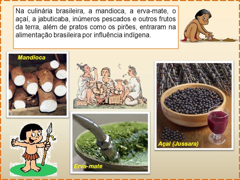 Na culinária brasileira, a mandioca, a erva-mate, o açaí, a jabuticaba, inúmeros pescados e outros frutos da terra, além de pratos como os pirões, ent