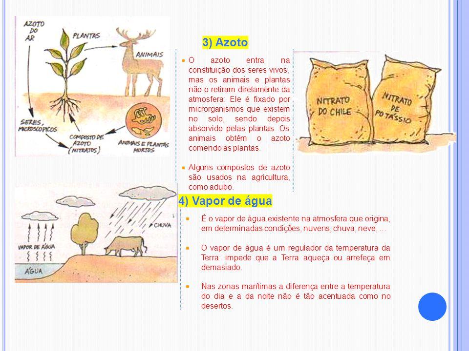 3) Azoto O azoto entra na constituição dos seres vivos, mas os animais e plantas não o retiram diretamente da atmosfera: Ele é fixado por microrganism
