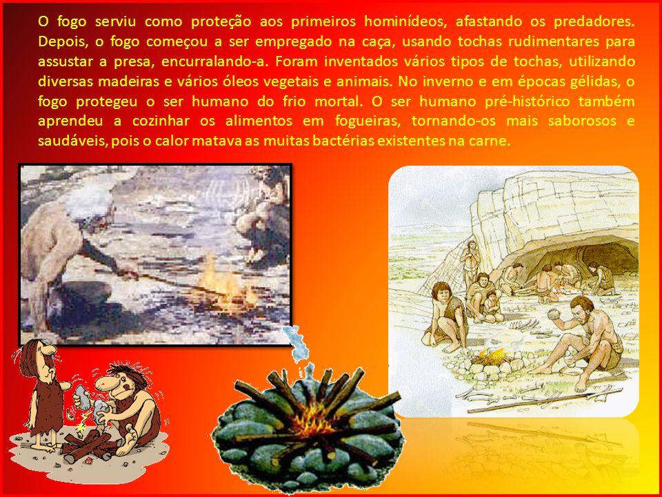 O fogo serviu como proteção aos primeiros hominídeos, afastando os predadores. Depois, o fogo começou a ser empregado na caça, usando tochas rudimenta