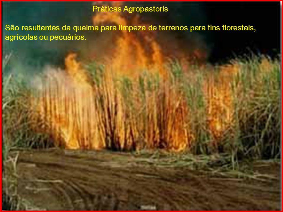 Práticas Agropastoris São resultantes da queima para limpeza de terrenos para fins florestais, agrícolas ou pecuários.