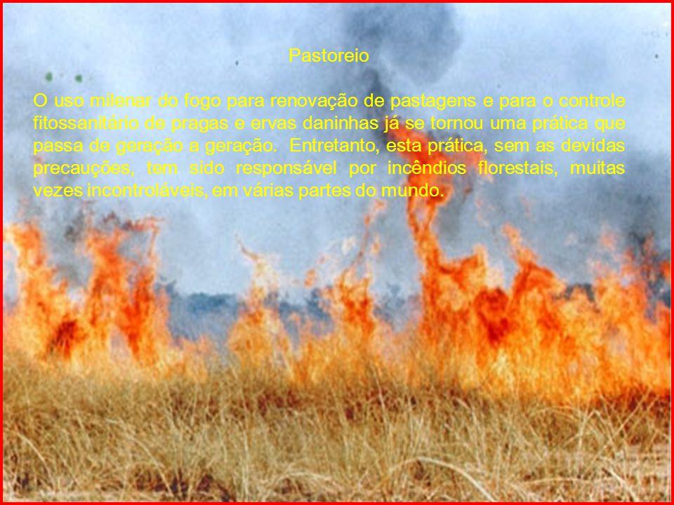 Fogueiras em Áreas de Visitação Pública Um grande número de incêndios florestais são causados por excursionistas, trabalhadores rurais, caçadores, lenhadores que têm a necessidade de acender fogueiras nos campos e florestas, mas ao deixarem o local, não têm o devido cuidado de apagar, total e corretamente, o fogo.