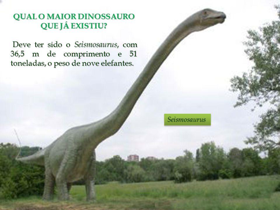 QUAL O MAIOR DINOSSAURO QUE JÁ EXISTIU? Deve ter sido o Seismosaurus, com 36,5 m de comprimento e 51 toneladas, o peso de nove elefantes. Deve ter sid