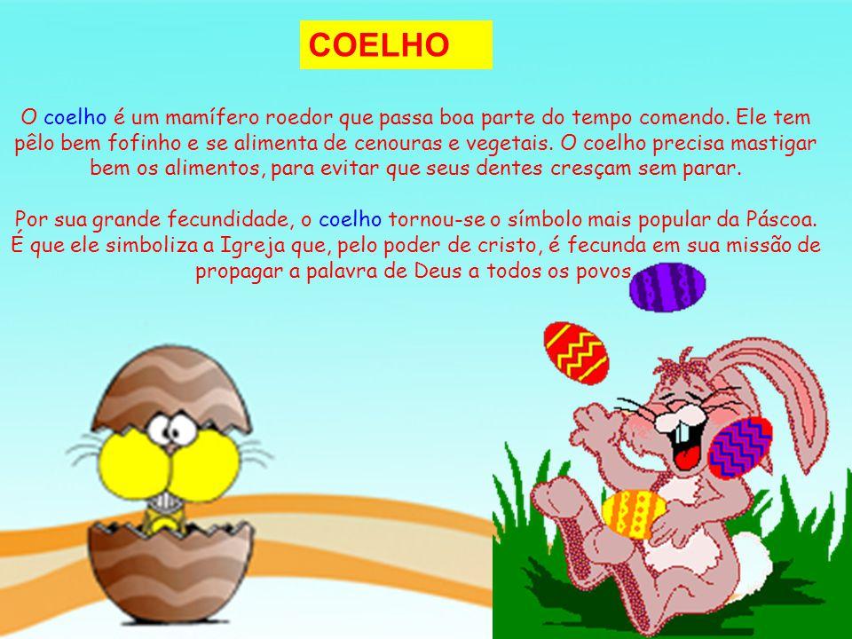 COELHO O coelho é um mamífero roedor que passa boa parte do tempo comendo. Ele tem pêlo bem fofinho e se alimenta de cenouras e vegetais. O coelho pre