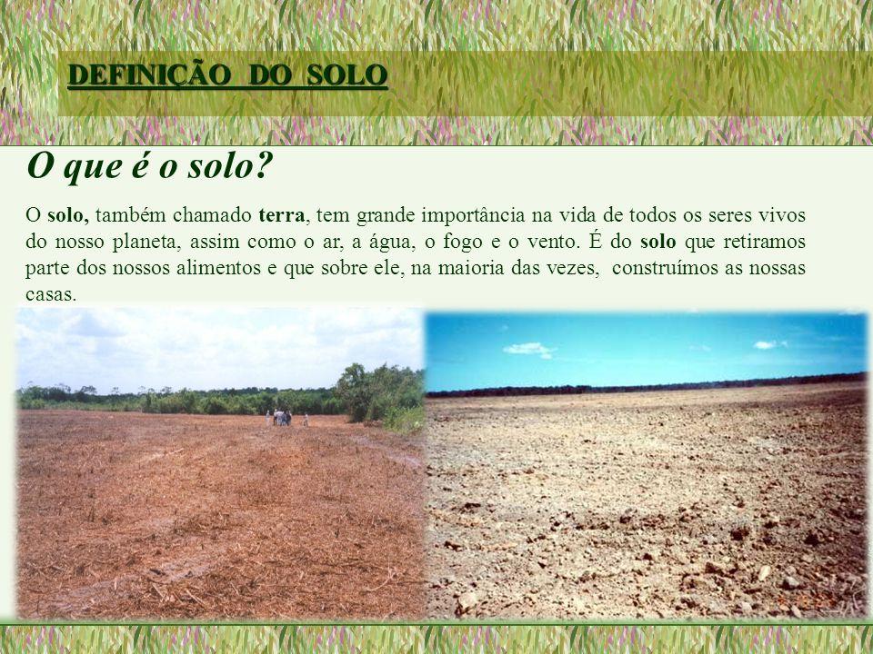 DEFINIÇÃO DO SOLO O que é o solo.