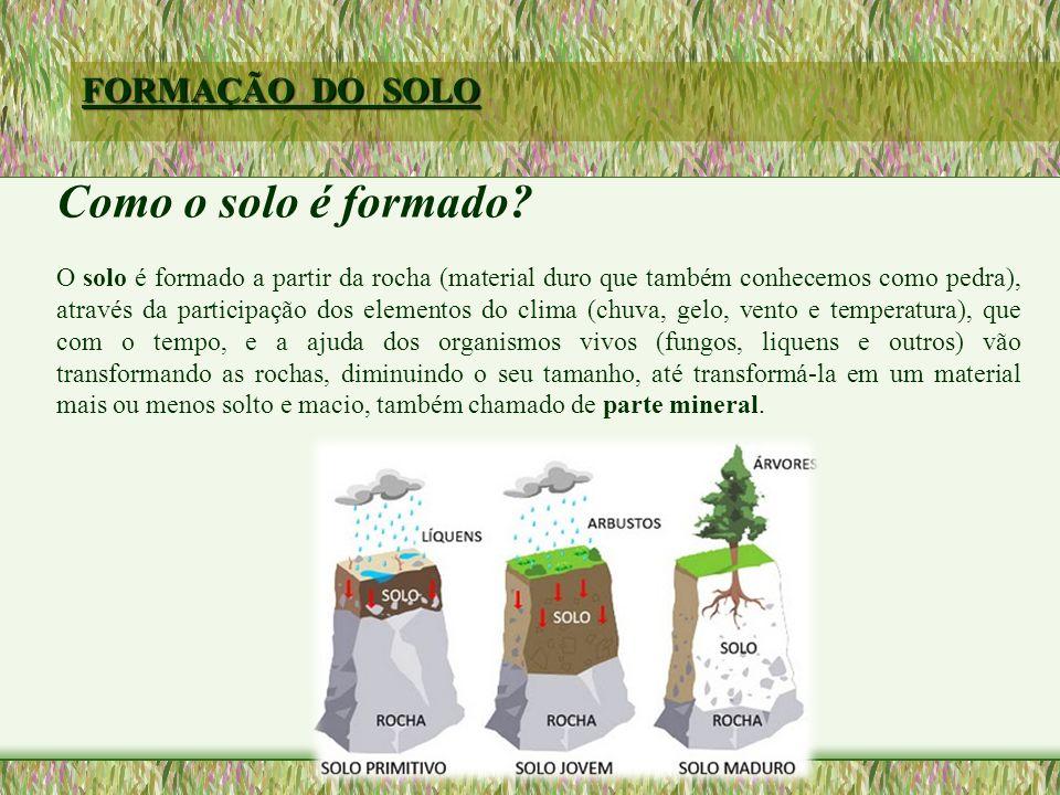 FORMAÇÃO DO SOLO Como o solo é formado.