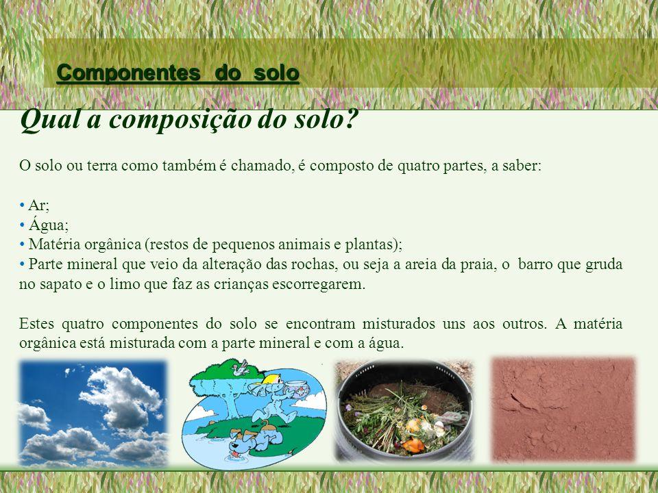 TIPOS DE SOLO O solo chamado arenoso possui uma quantidade maior de areia do que de outros componentes.
