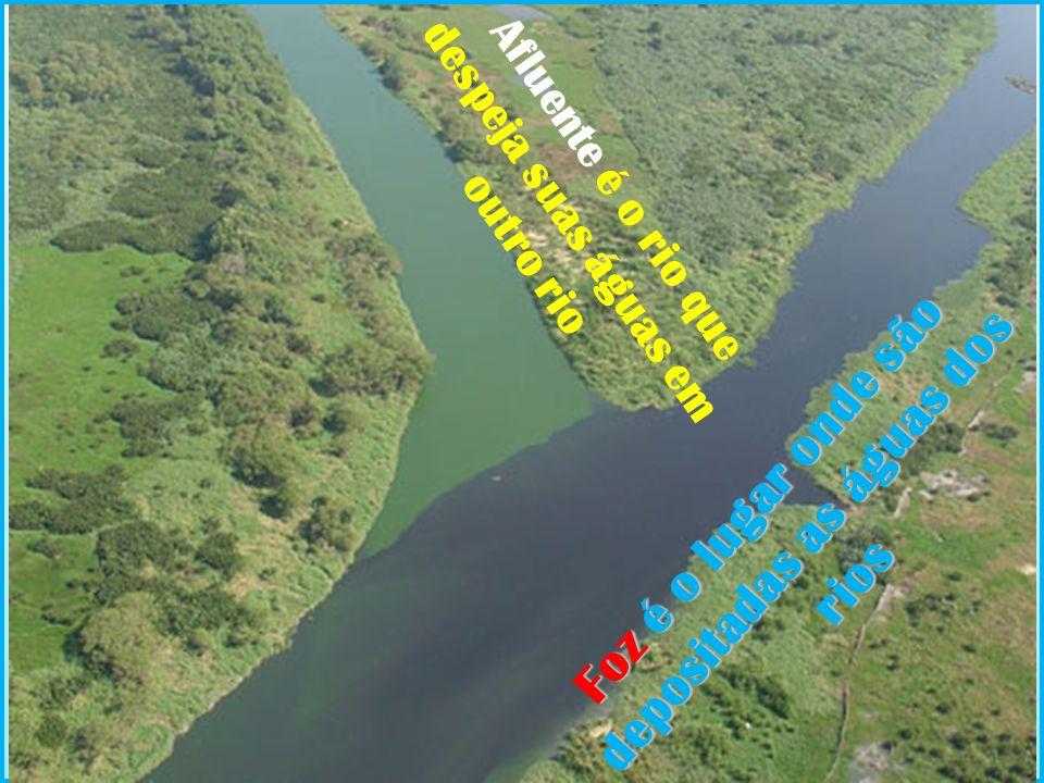 Foz é o lugar onde são depositadas as águas dos rios Afluente é o rio que despeja suas águas em outro rio