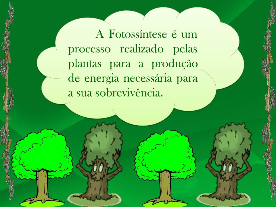 A Fotossíntese é um processo realizado pelas plantas para a produção de energia necessária para a sua sobrevivência.