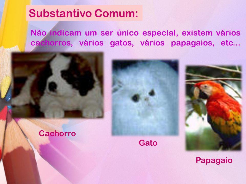 Substantivo Comum: Não indicam um ser único especial, existem vários cachorros, vários gatos, vários papagaios, etc... Gato Cachorro Papagaio