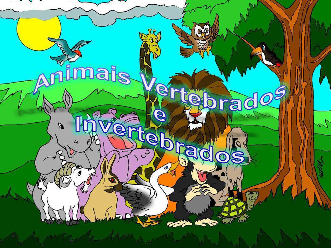 Animais vertebrados Os animais vertebrados são os seres vivos que possuem o organismo mais avançado em nosso planeta.