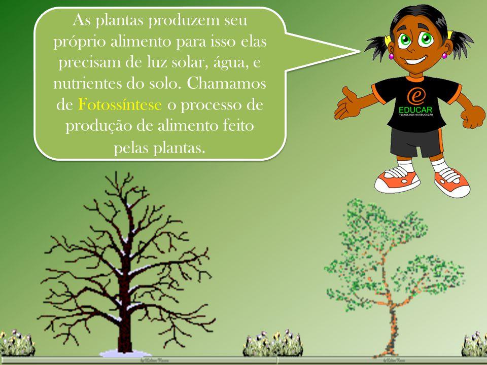 As plantas produzem seu próprio alimento para isso elas precisam de luz solar, água, e nutrientes do solo. Chamamos de Fotossíntese o processo de prod