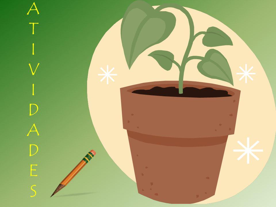 Observe a planta abaixo e identifique as partes destacadas