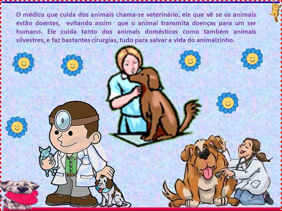 O médico que cuida dos animais chama-se veterinário, ele que vê se os animais estão doentes, evitando assim que o animal transmita doenças para um ser