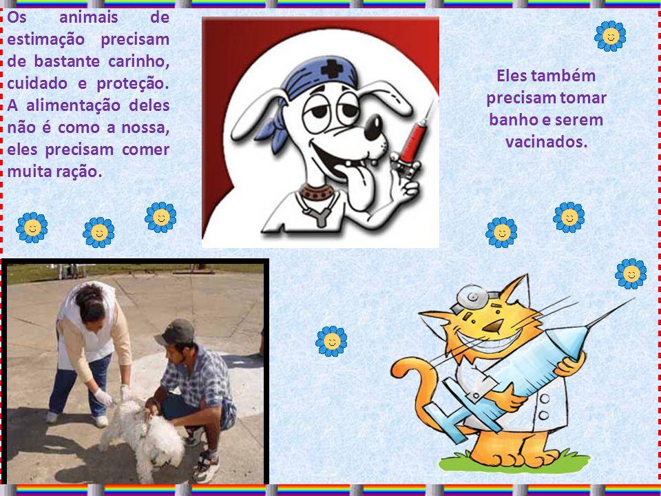 Eles também precisam tomar banho e serem vacinados. Os animais de estimação precisam de bastante carinho, cuidado e proteção. A alimentação deles não
