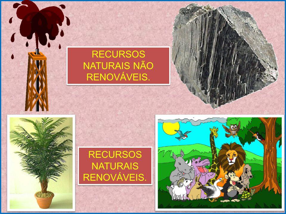 São considerados recursos naturais tudo aquilo que é necessário ao homem e que se encontra na natureza, dentre os quais podemos citar: o solo, a água, o oxigênio, energia oriunda do Sol, as florestas, os animais, dentre outros.