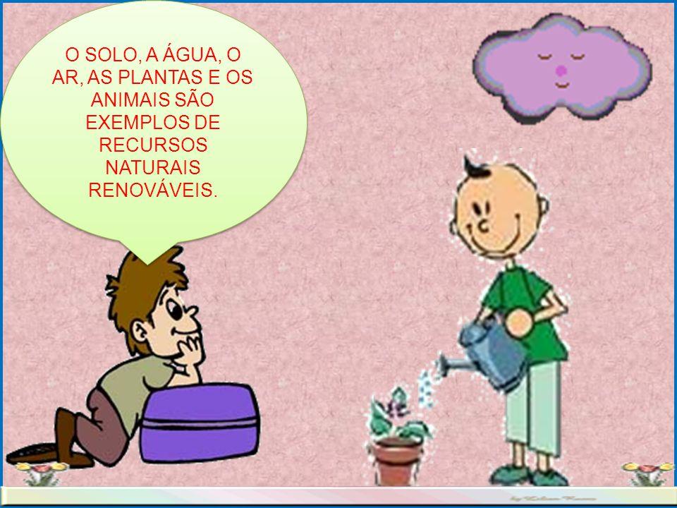 O SOLO, A ÁGUA, O AR, AS PLANTAS E OS ANIMAIS SÃO EXEMPLOS DE RECURSOS NATURAIS RENOVÁVEIS.