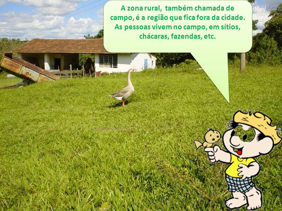 A zona rural, também chamada de campo, é a região que fica fora da cidade. As pessoas vivem no campo, em sítios, chácaras, fazendas, etc.