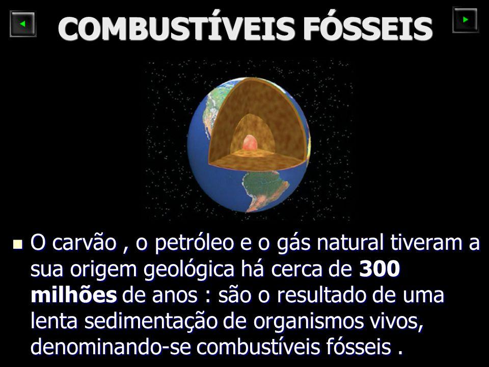 COMBUSTÍVEIS FÓSSEIS O carvão, o petróleo e o gás natural tiveram a sua origem geológica há cerca de 300 milhões de anos : são o resultado de uma lenta sedimentação de organismos vivos, denominando-se combustíveis fósseis.