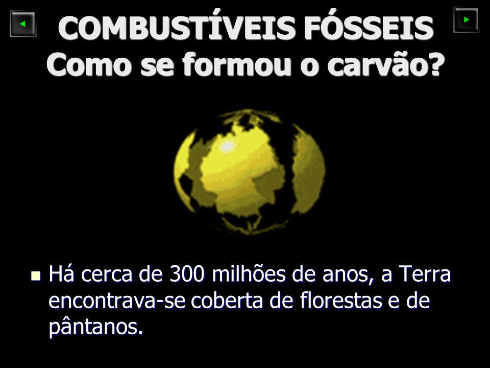 COMBUSTÍVEIS FÓSSEIS Como se formou o carvão? Há cerca de 300 milhões de anos, a Terra encontrava-se coberta de florestas e de pântanos. Há cerca de 3
