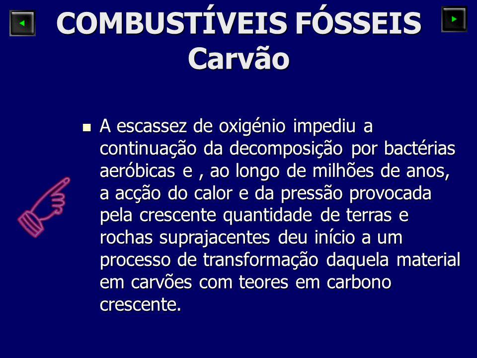COMBUSTÍVEIS FÓSSEIS Como se formou o carvão.