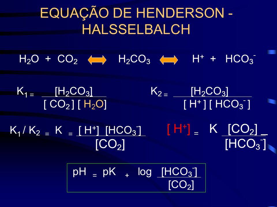 EQUAÇÃO DE HENDERSON - HALSSELBALCH H 2 CO 3 H 2 O + CO 2 H + + HCO 3 - K 1 = [H 2 CO 3 ] [ CO 2 ] [ H 2 O] K 2 = [H 2 CO 3 ] [ H + ] [ HCO 3 - ] K 1 / K 2 = K = [ H + ] [HCO 3 - ] [CO 2 ] [ H + ] = K [CO 2 ].