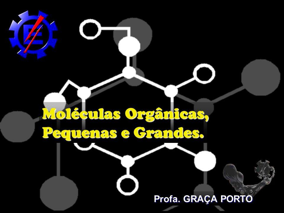 Moléculas Orgânicas, Pequenas e Grandes. Profa. GRAÇA PORTO